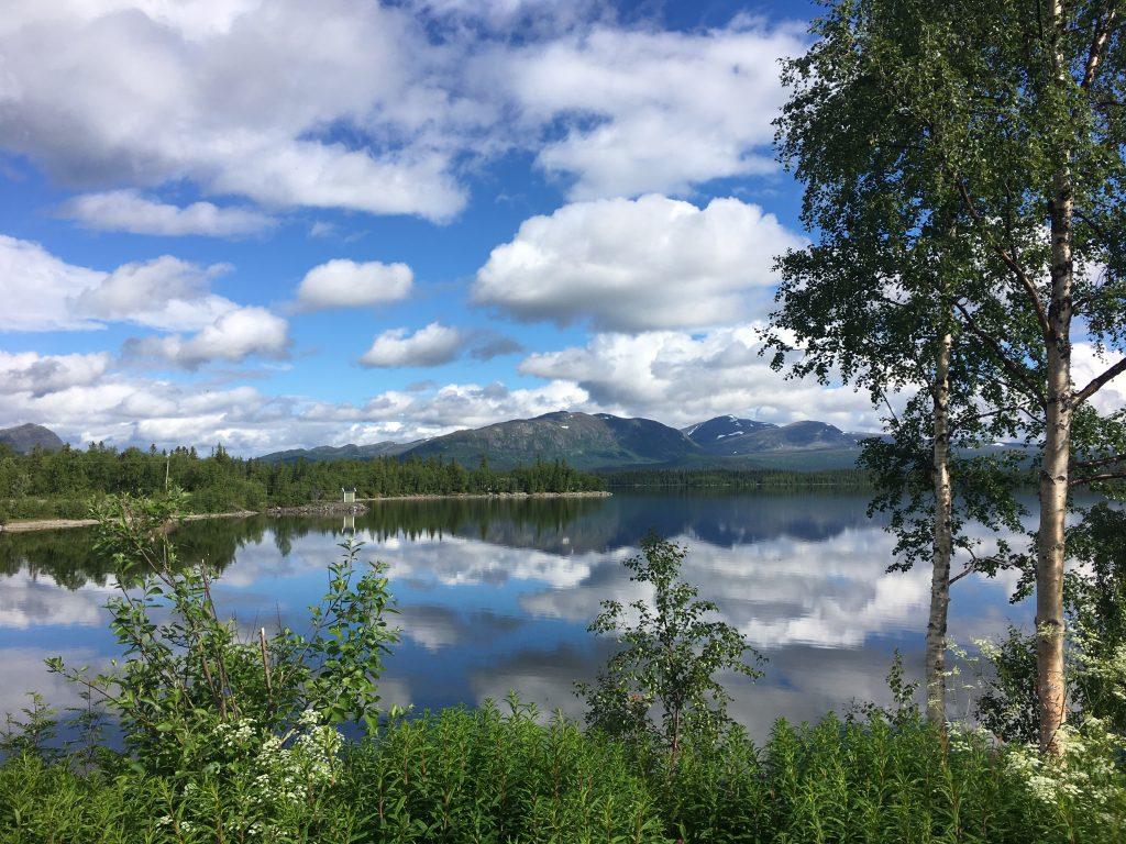 torrflugefiske i norrland